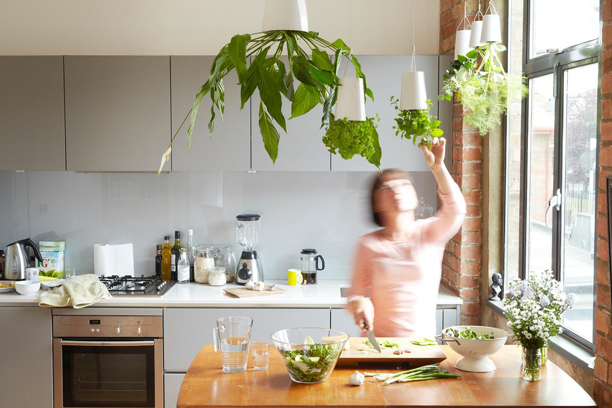 10 ideas para tener tu propio mini huerto de cocina - La cocina en casa ...