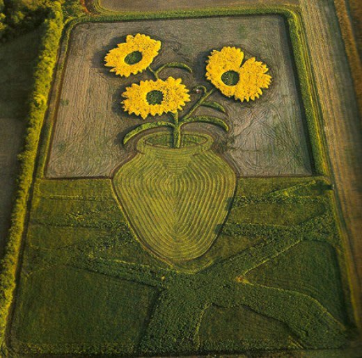 land-crop-art-by-stan-herd-3