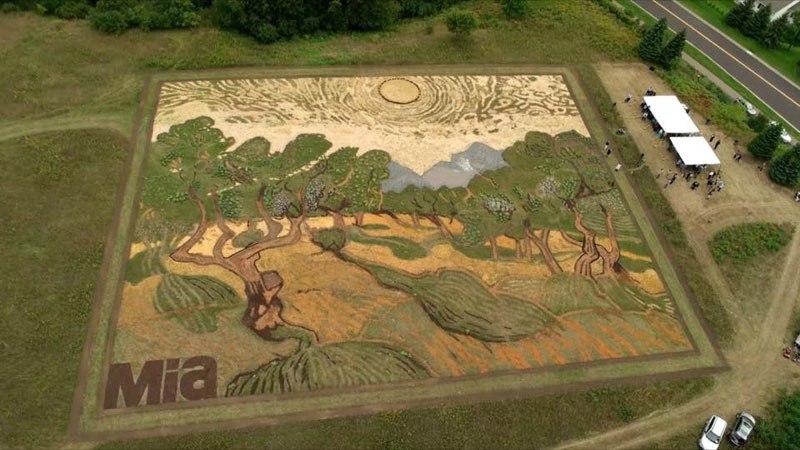 land-crop-art-by-stan-herd-5