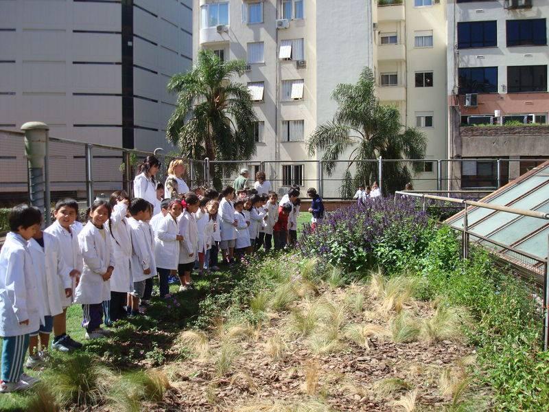 """Uno de los primeros techos verdes de la ciudad de Buenos Aires es el de la Escuela Nº6 """"French y Beruti"""":"""