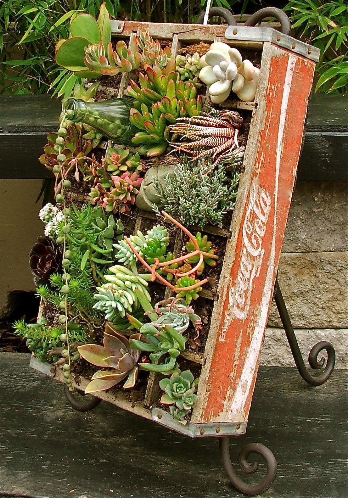 Proyectos para tus jardines en miniatura construir tv for Jardines en miniatura