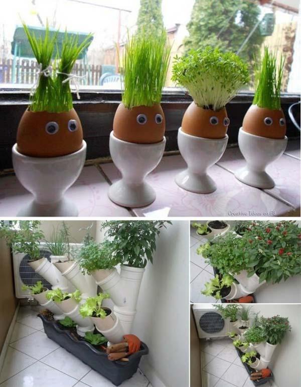 proyectos para tus jardines en miniatura